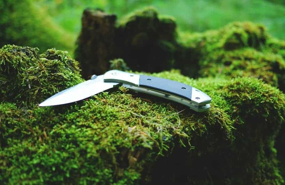 Pocketknife on a Stump