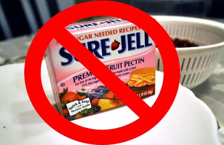 Sure-Jell Fruit Pectin Box Red Circle.jpg