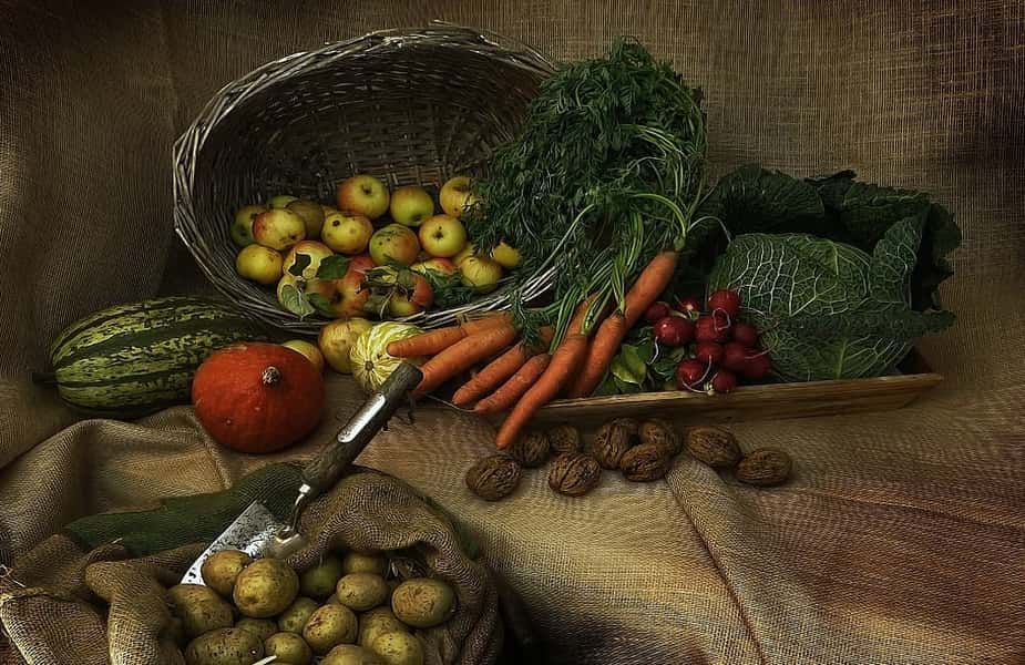 Vegetables and Fruits in Storage