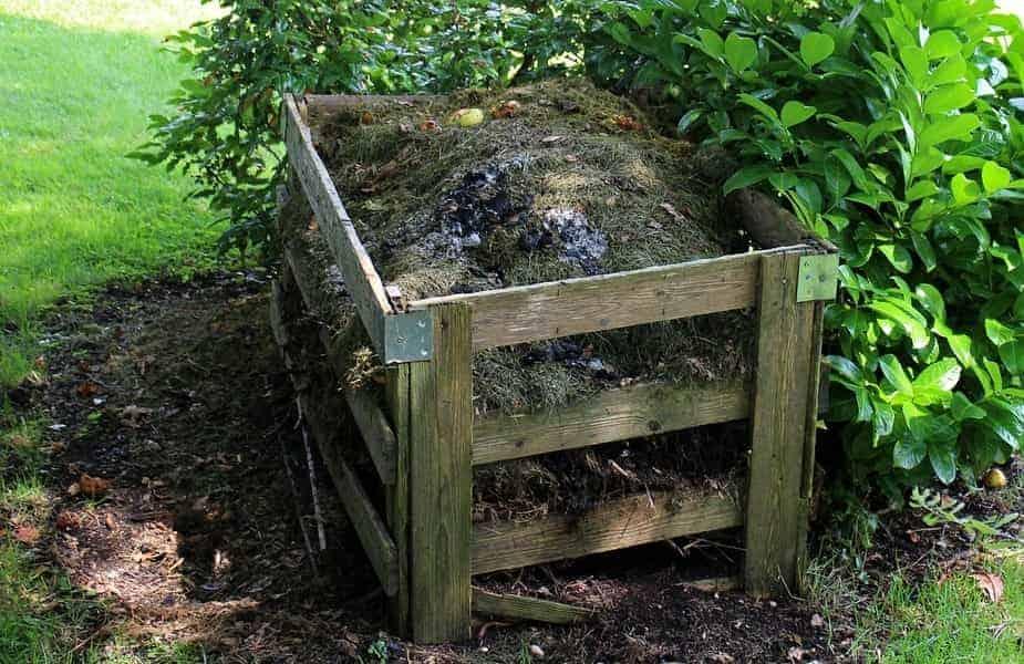 Wooden Compost Bin Next to Bush