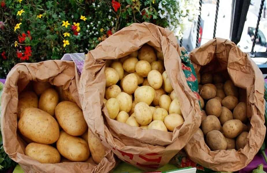 3 Bags of Different Kinds of Potatoes