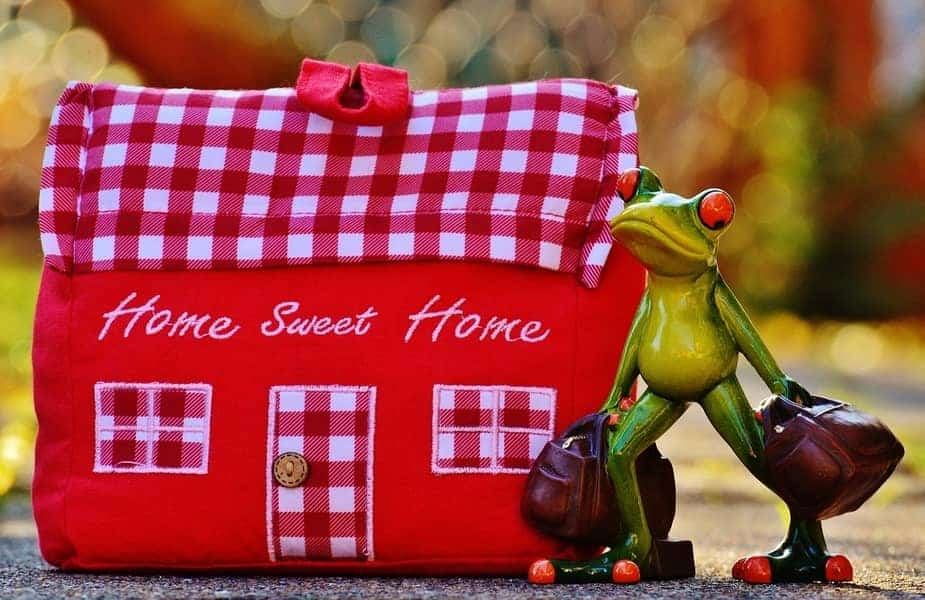 Ceramic Frog with Suitcases in From of a Craft House that says Home Sweet Home