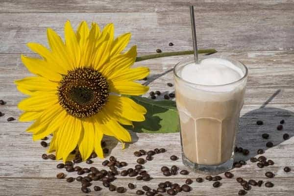 Glass of Cold Coffee next to a Sunflower