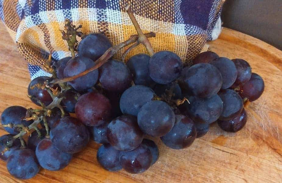 Purple Grapes on a Table