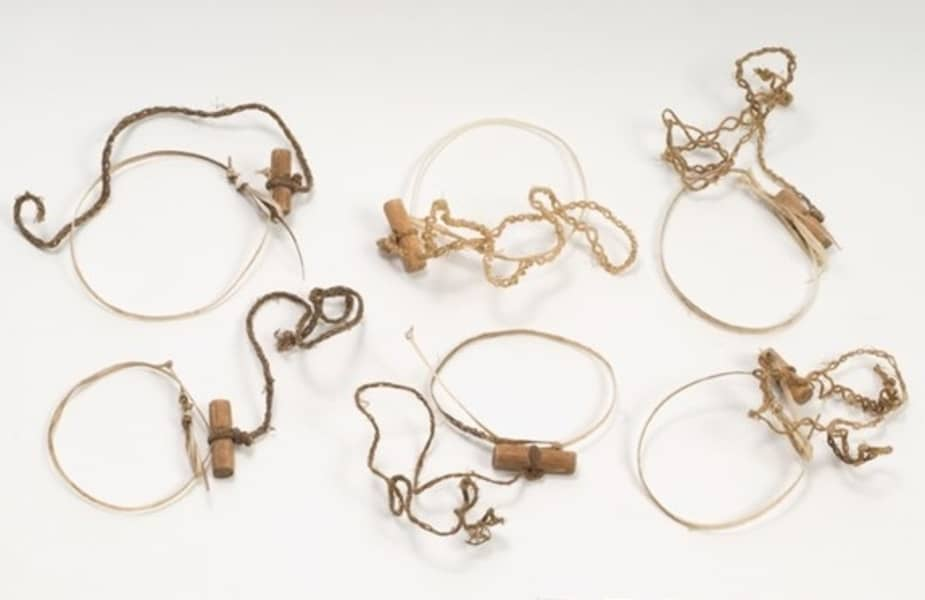 A Variety of Wire Snares