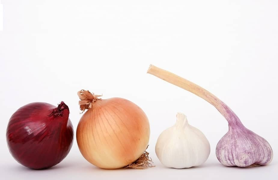 4 Different Types of Onions