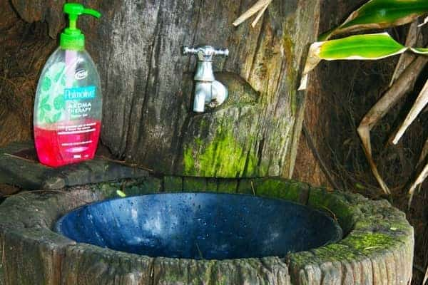 Wash Basin in Tree Stump with Soap and Spigot