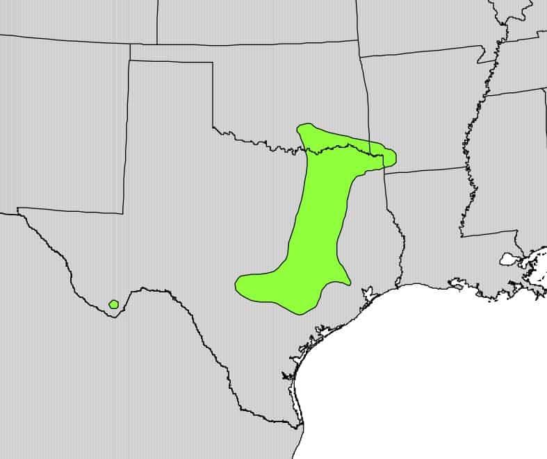 Osage-Orange-Natural-Range