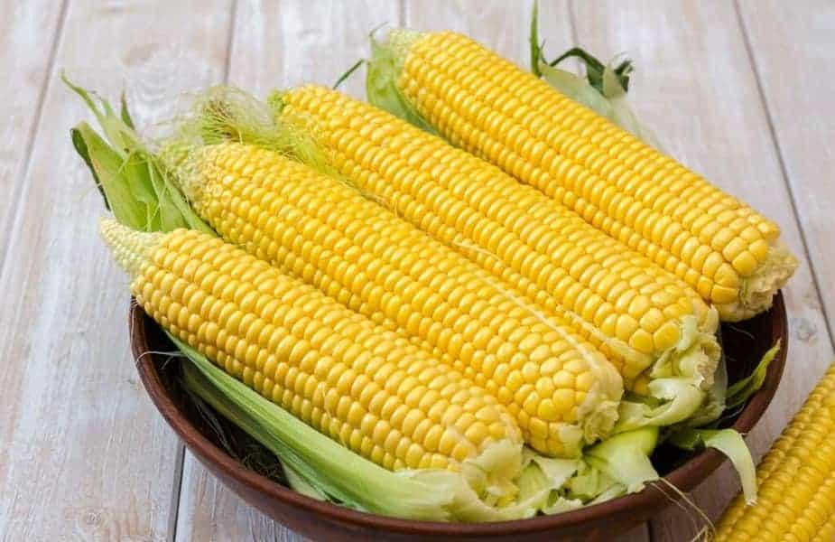 A-Bowl-of-Corn-Ears