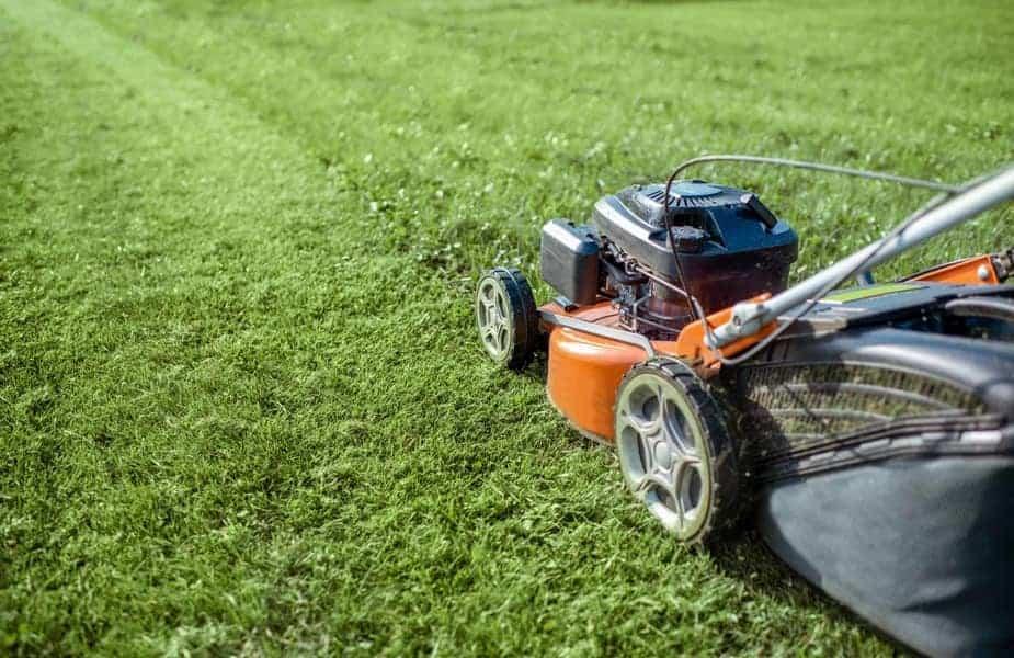 Red Lawn Mower Cutting Grass